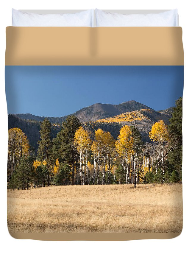 Fall Duvet Cover featuring the photograph Autumn In Lockett Meadow by Susan Westervelt