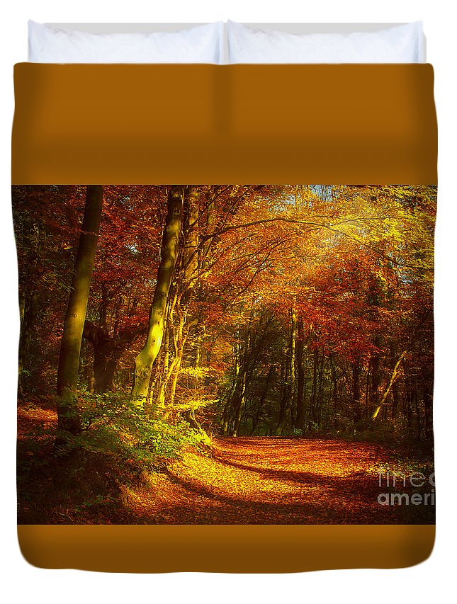 Autumn Duvet Cover featuring the photograph Autumn In Siebengebirge by Katarjina Telesh