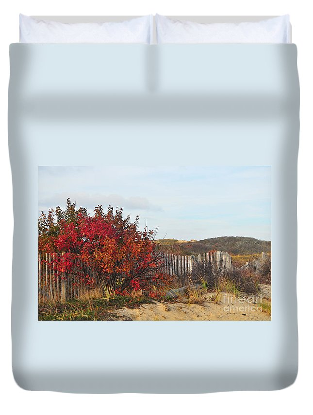 Fall Duvet Cover featuring the photograph Autumn In The Dunes by Catherine Reusch Daley