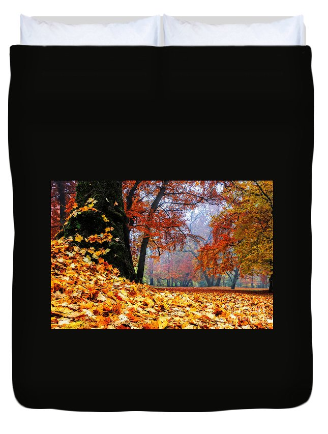 Autumn Duvet Cover featuring the photograph Autumn In The Woodland by Hannes Cmarits