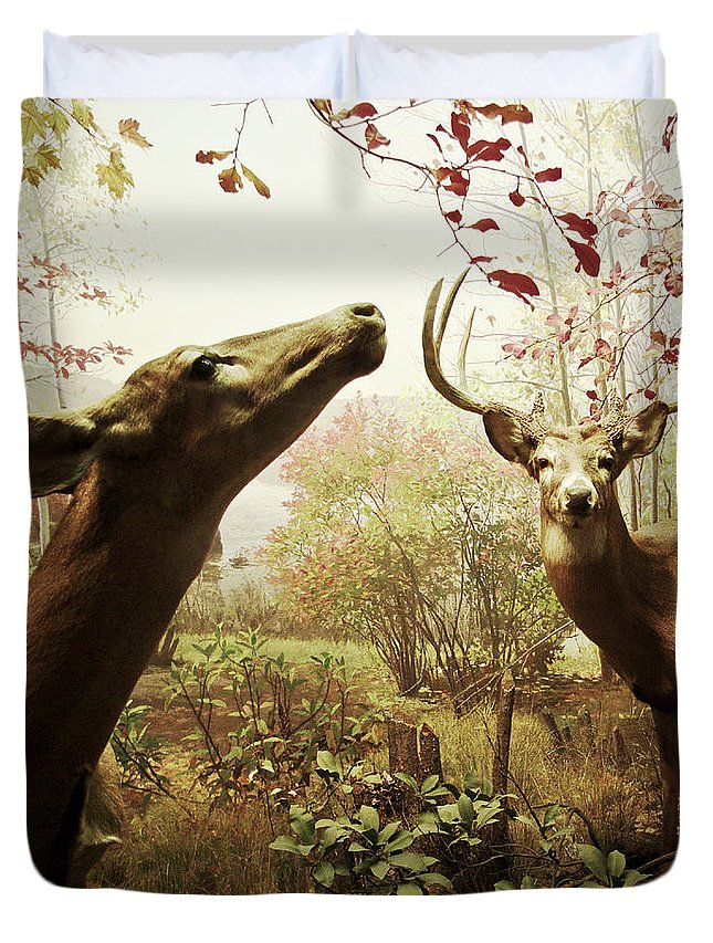 Deer Duvet Cover featuring the photograph Autumn In The Woods by Zena Zero