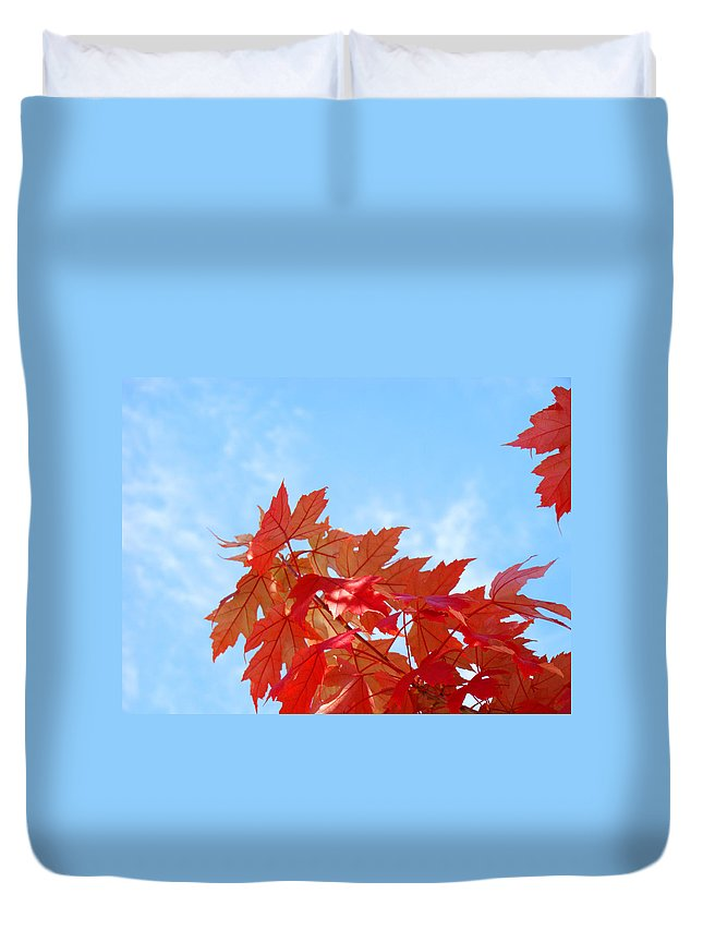 Autumn Duvet Cover featuring the photograph Autumn Landscape Fall Leaves Blue Sky White Clouds Baslee by Baslee Troutman
