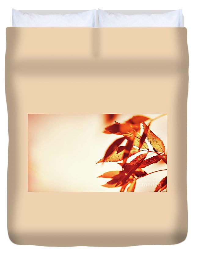 Abstract Duvet Cover featuring the photograph Autumn Leaves Border by Anna Om