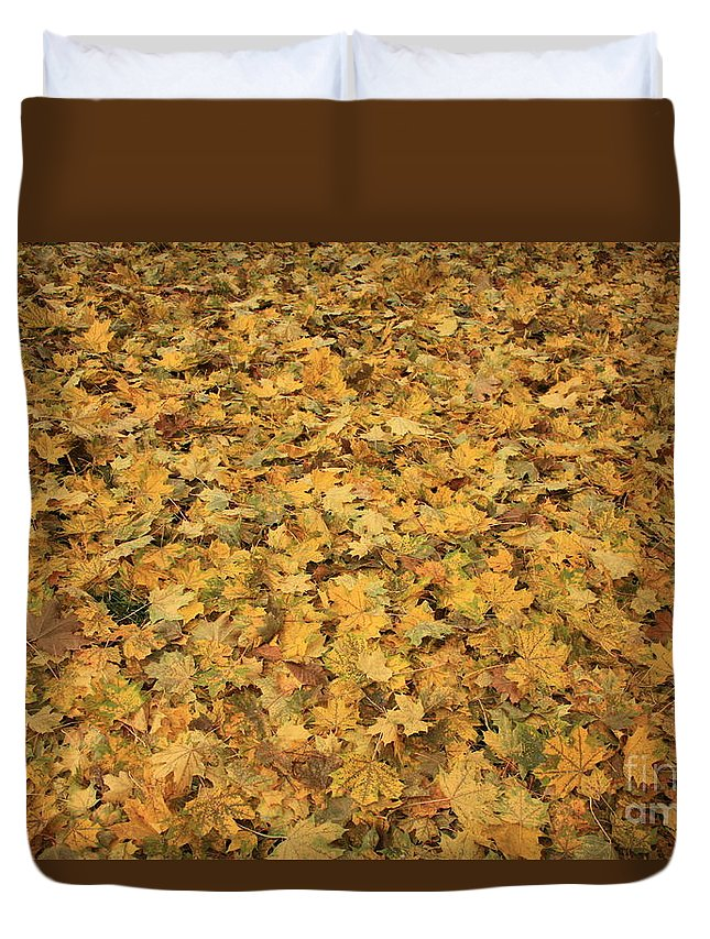 Autumn Duvet Cover featuring the photograph Autumn Leaves Canvas by Carol Groenen