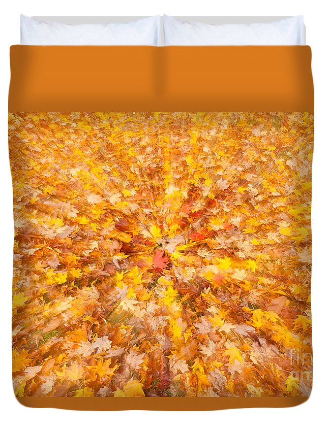 Clarence Holmes Duvet Cover featuring the photograph Autumn Leaves II by Clarence Holmes