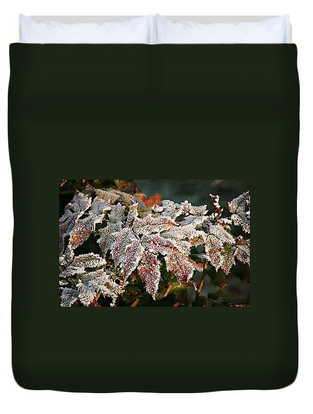 Fall Duvet Cover featuring the photograph Autumn Leaves In A Frozen Winter World by Christine Till