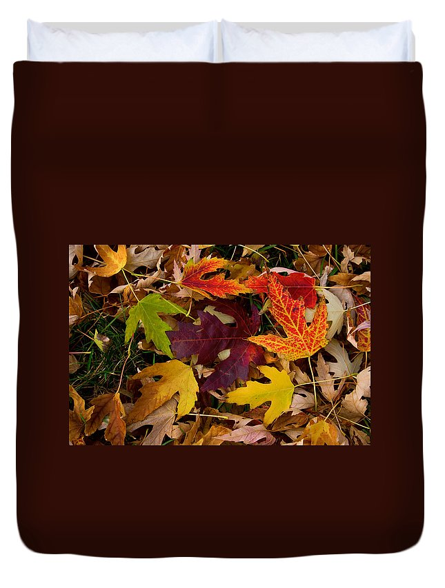 Leaves Duvet Cover featuring the photograph Autumn Leaves by James BO Insogna