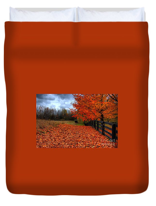 Autumn Duvet Cover featuring the photograph Autumn Leaves by Joe Ng