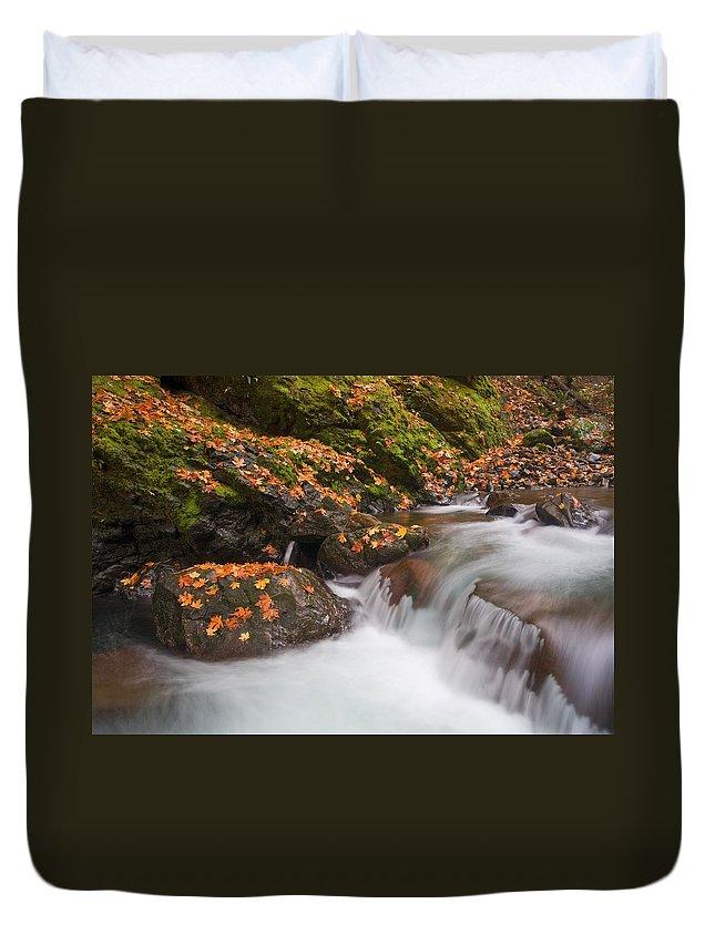 Autumn Duvet Cover featuring the photograph Autumn Litter by Mike Dawson