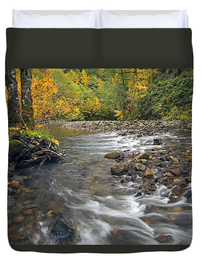 Fall Duvet Cover featuring the photograph Autumn Meander by Mike Dawson