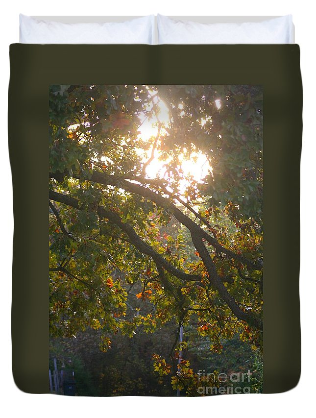 Autumn Duvet Cover featuring the photograph Autumn Morning Glow by Nadine Rippelmeyer