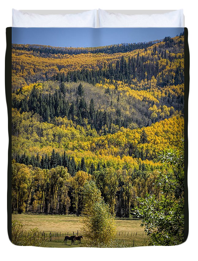 Autumn Duvet Cover featuring the photograph Autumn On A Colorado Range by Janice Pariza