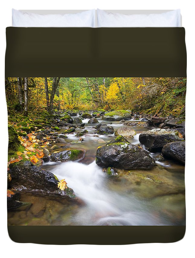 Fall Duvet Cover featuring the photograph Autumn Passing by Mike Dawson