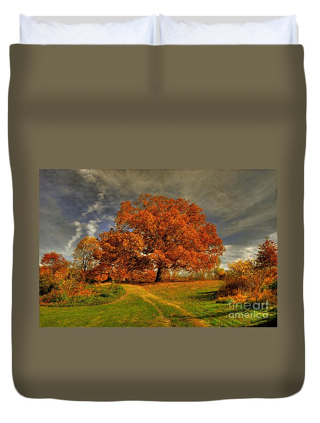 Autumn Duvet Cover featuring the photograph Autumn Picnic On The Hill by Lois Bryan