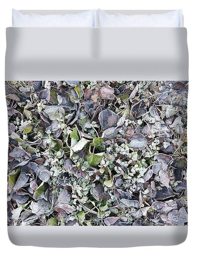 Landscape Duvet Cover featuring the photograph Autumn Poems by Petur Hilmarsson