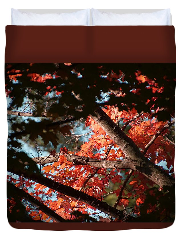Colorful Duvet Cover featuring the photograph Autumn Red Trees 2015 02 by Thomas Woolworth