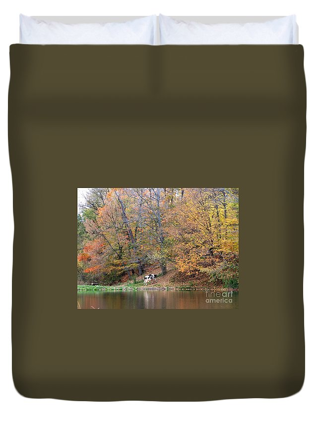 Autumn Duvet Cover featuring the photograph Autumn Reflections Cow Farm by Charlene Cox