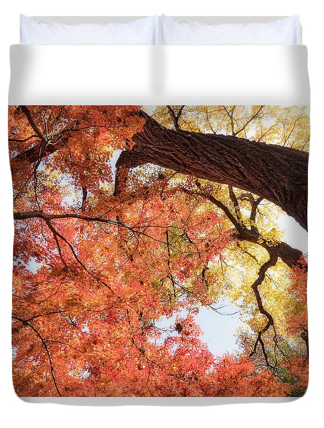 Fort Worth Duvet Cover featuring the photograph Autumn Sky by Dan Leffel