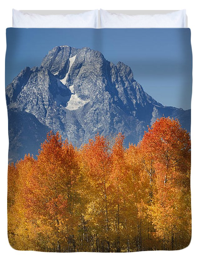 Grand Teton Duvet Cover featuring the photograph Autumn Splendor In Grand Teton by Sandra Bronstein