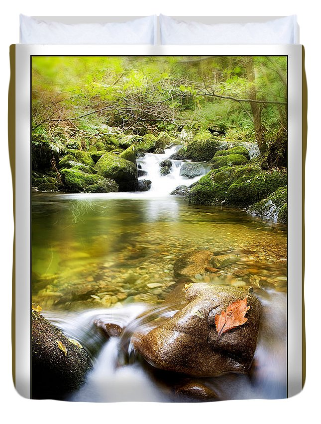 Stream Duvet Cover featuring the photograph Autumn Stream by Mal Bray