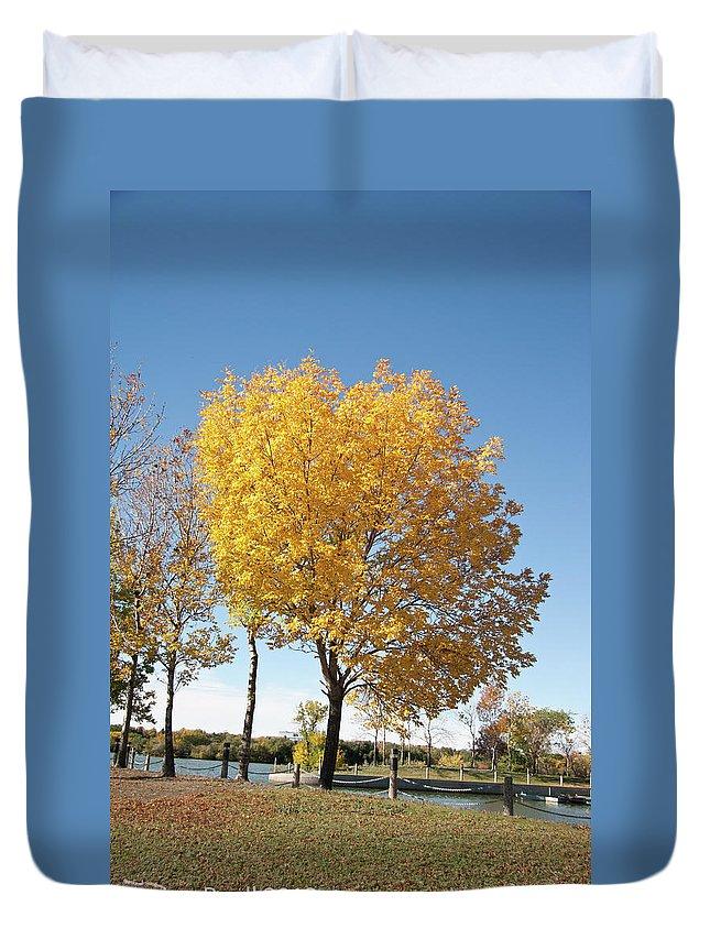 Trees Duvet Cover featuring the photograph Autumn Sunshine by Deanna Paull