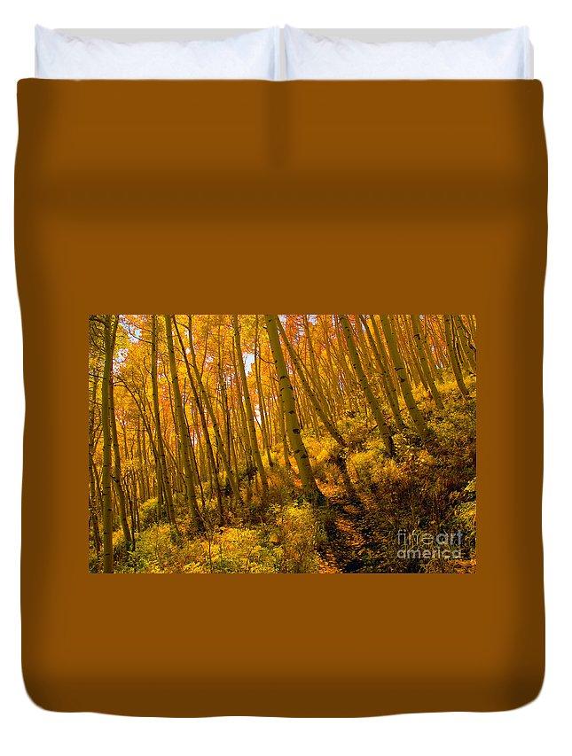 Autumn Duvet Cover featuring the photograph Autumn Trail by David Lee Thompson