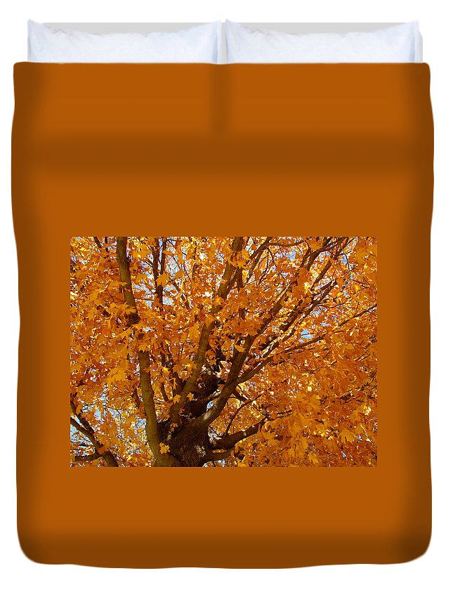 Autumn Duvet Cover featuring the photograph Autumn Tree by Sherri Williams