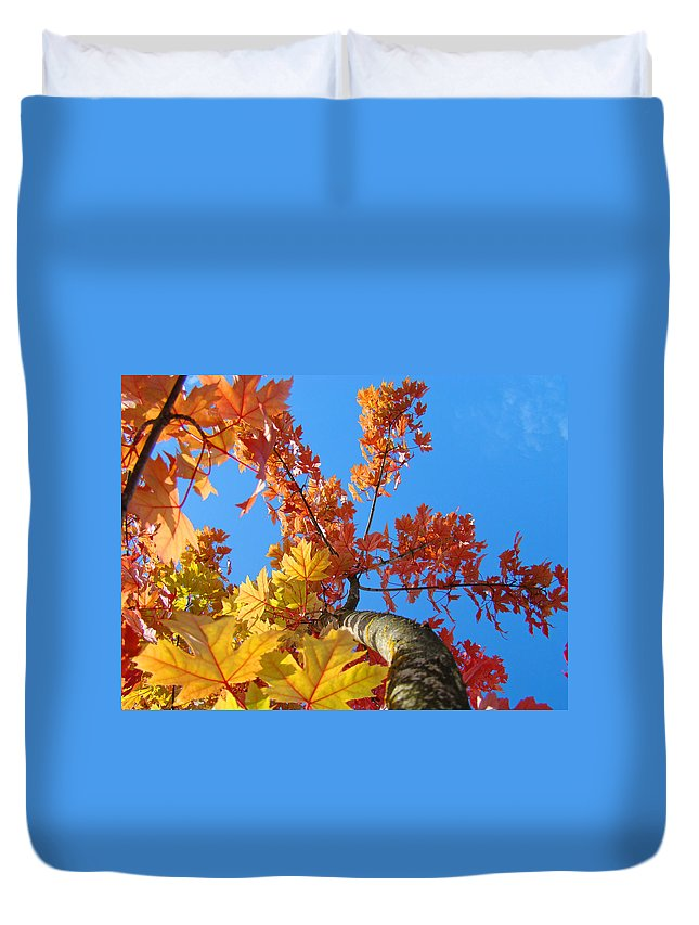 Autumn Duvet Cover featuring the photograph Autumn Trees Artwork Fall Leaves Blue Sky Baslee Troutman by Baslee Troutman