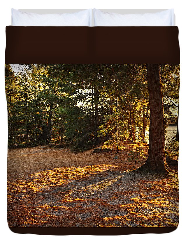 Trees Duvet Cover featuring the photograph Autumn Trees Near Lake by Elena Elisseeva