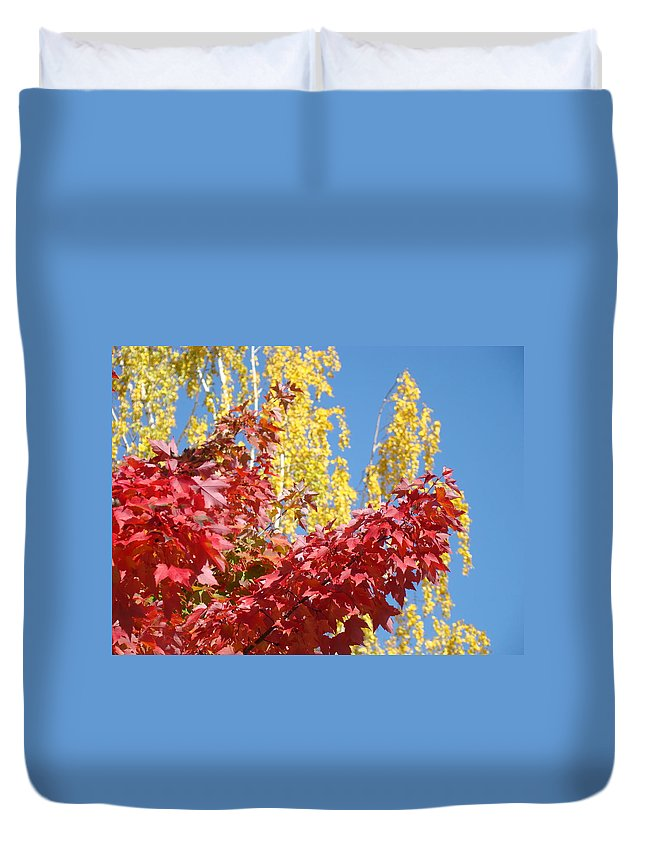 Autumn Duvet Cover featuring the photograph Autumn Trees Red Yellow Fall Tree Blue Sky Landsape by Baslee Troutman