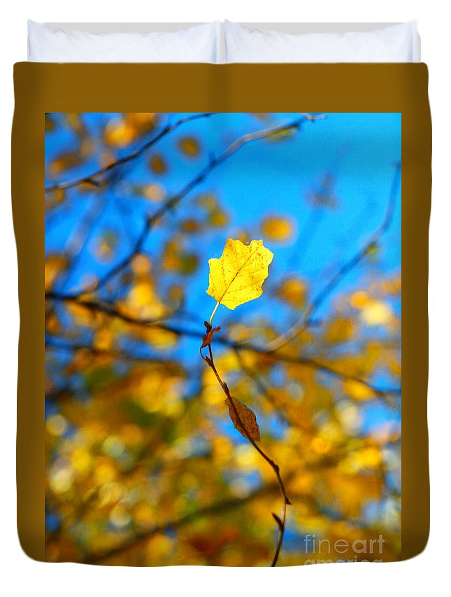 Duvet Cover featuring the photograph Autumn Twist by Tara Turner