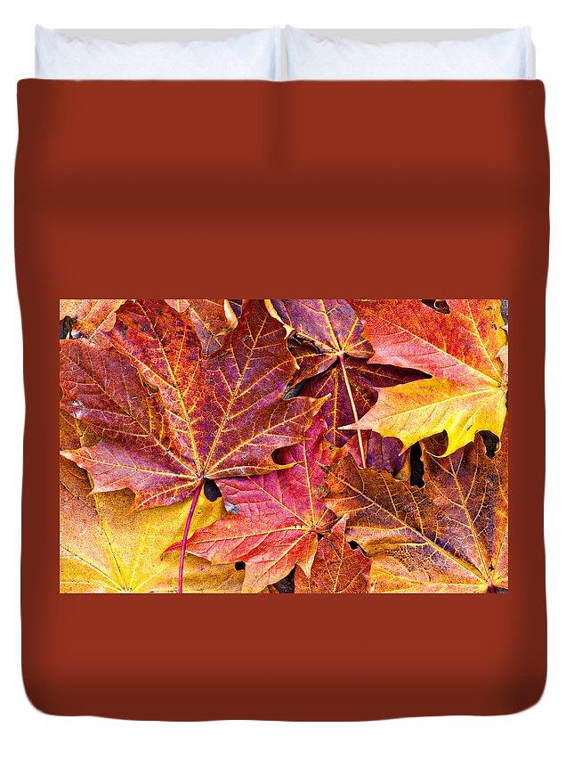 Autumn Duvet Cover featuring the photograph Autumnal Carpet by Meirion Matthias