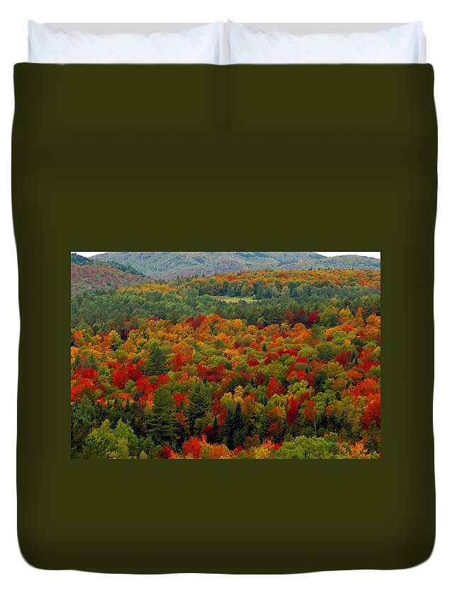 Autumn Duvet Cover featuring the painting Autumns colors by David Lee Thompson