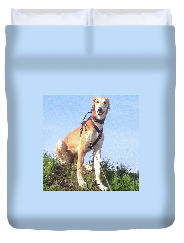 Salukilove Duvet Cover featuring the photograph Ava-grace, Princess Of Arabia  #saluki by John Edwards