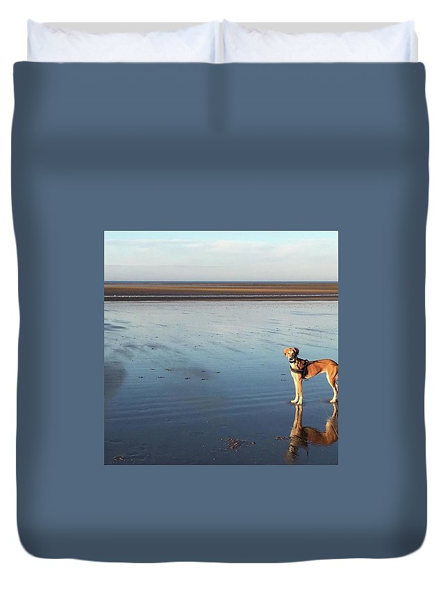 Dogsofinstagram Duvet Cover featuring the photograph Ava's Last Walk On Brancaster Beach by John Edwards