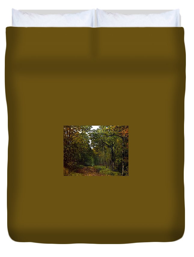 Avenue Of Chestnut Trees Near La Celle-saint-cloud Duvet Cover featuring the painting Avenue Of Chestnut Trees by MotionAge Designs