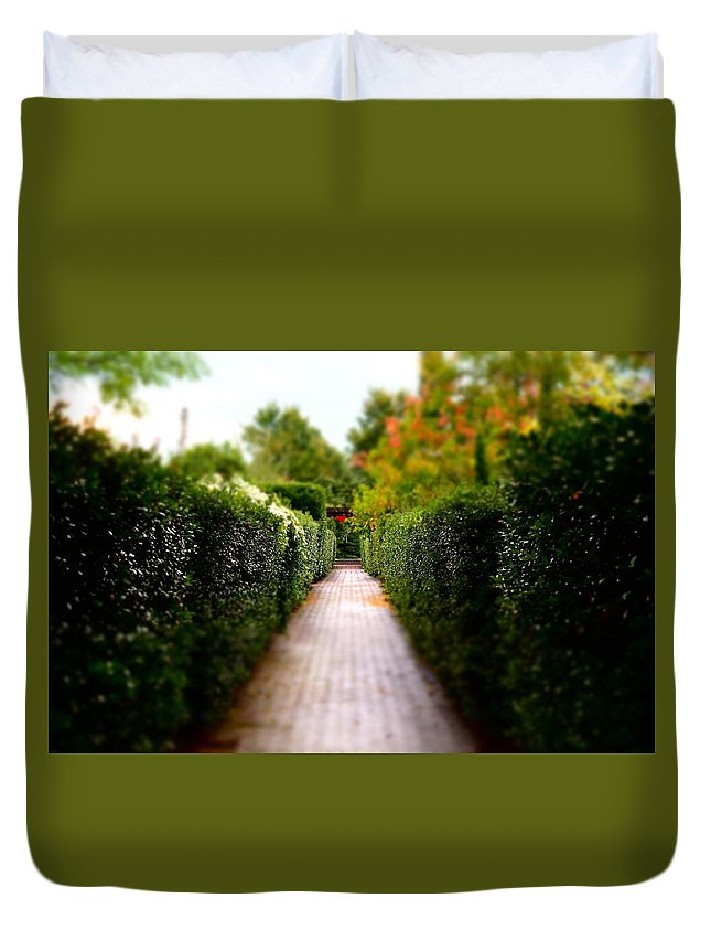 Duvet Cover featuring the photograph Avenue Of Dreams 2 by Rodney Lee Williams