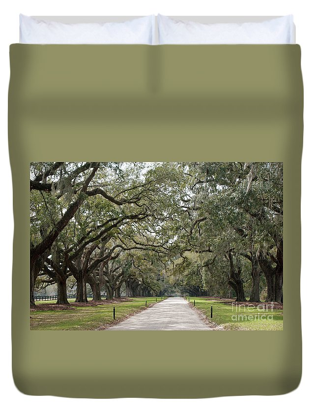 Spanish Moss Duvet Cover featuring the photograph Avenue Of The Oaks by Roger Potts