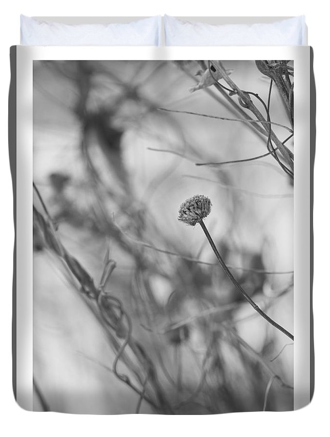 Plants Duvet Cover featuring the photograph Avoiding Entanglements by Mary Konczyk