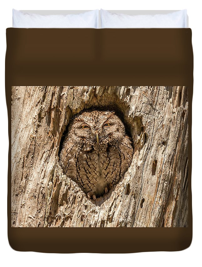 Bird Duvet Cover featuring the photograph Awareness by David Kulp