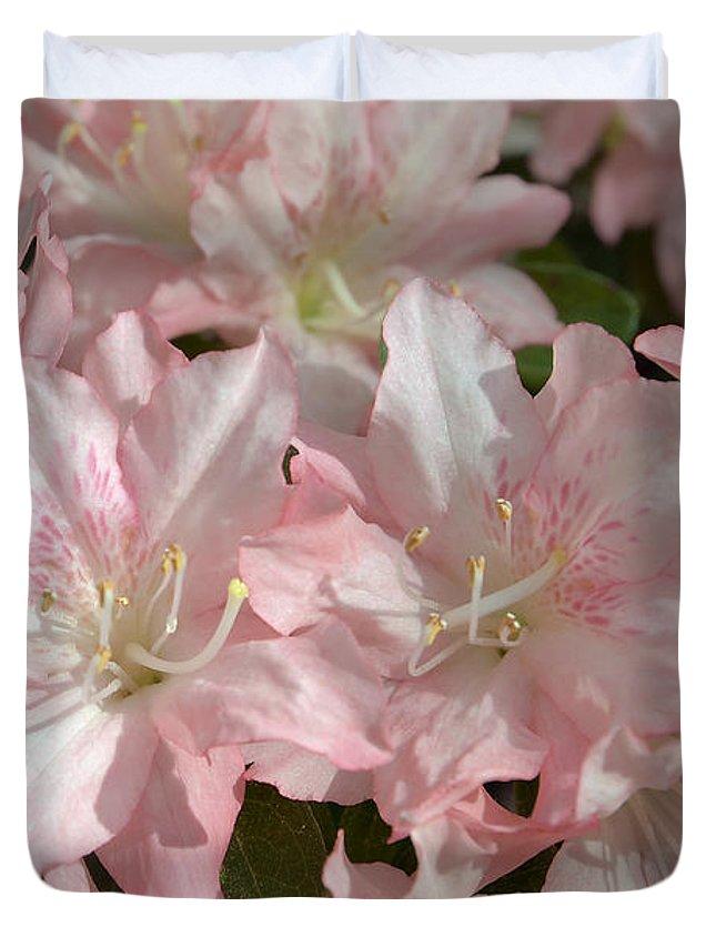 Spring Duvet Cover featuring the photograph Azalea 5831 by Terri Winkler