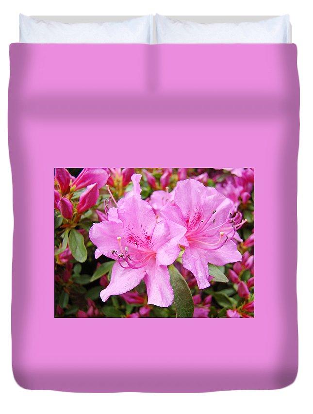 Azalea Duvet Cover featuring the photograph Azalea Garden Art Prints Pink Azaleas Flowers Baslee Troutman by Baslee Troutman
