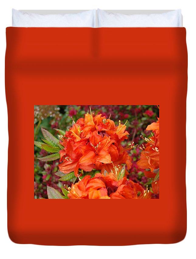 Azalea Duvet Cover featuring the photograph Azaleas Rhodies Art Prints Azalea Flowers Giclee Baslee Troutman by Baslee Troutman