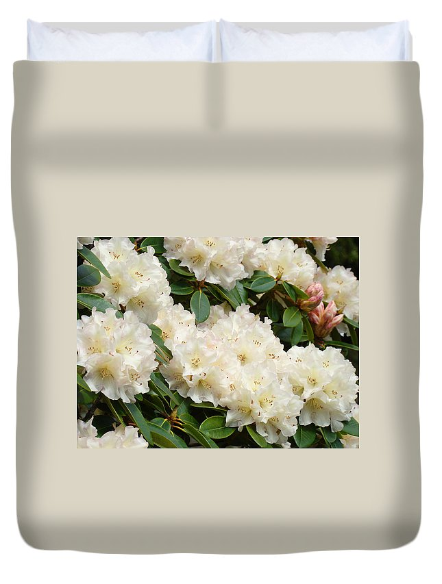 �azaleas Artwork� Duvet Cover featuring the photograph Azaleas Rhodies Landscape White Pink Rhododendrum Flowers 8 Giclee Art Prints Baslee Troutman by Baslee Troutman