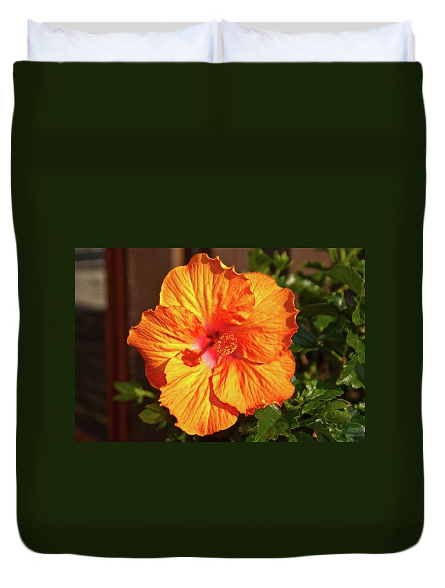 Flowers Duvet Cover featuring the photograph B Glavin Garden 11604 by Guy Whiteley