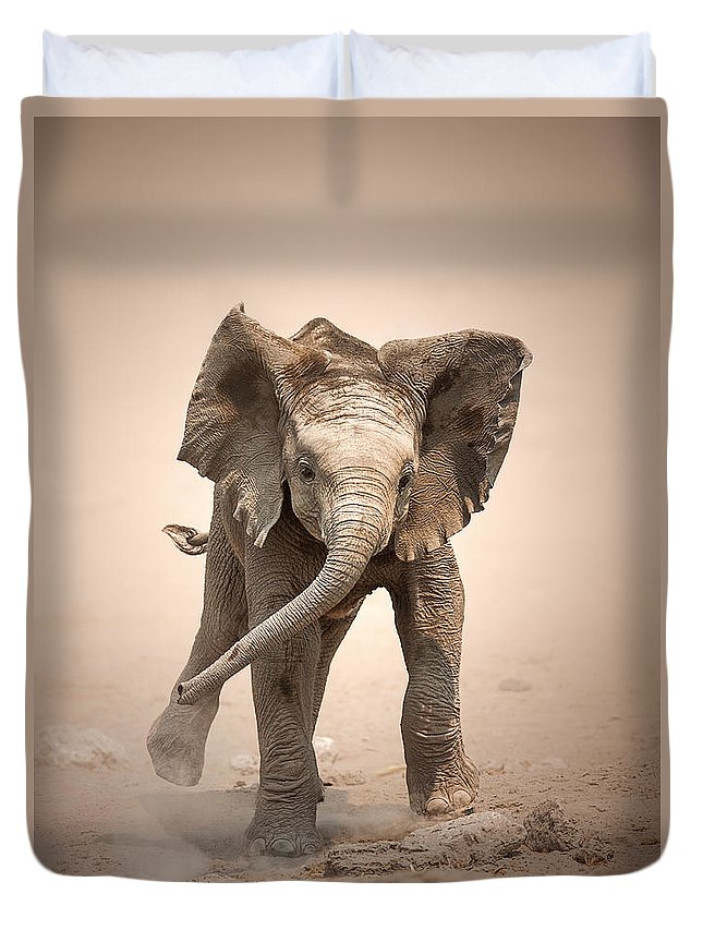 Elephant Duvet Cover featuring the photograph Baby Elephant mock charging by Johan Swanepoel