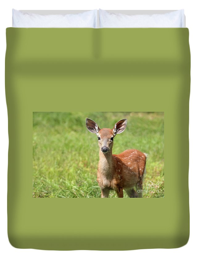 Animal Duvet Cover featuring the photograph Baby In The Tall Grass by Karol Livote