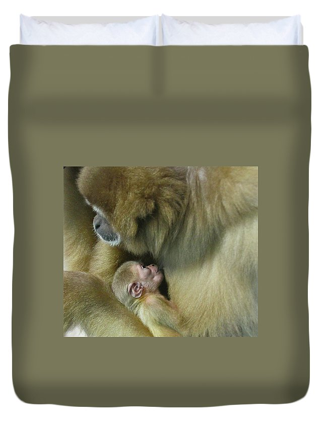 Monkey Duvet Cover featuring the photograph Baby Monkey by Rick Monyahan