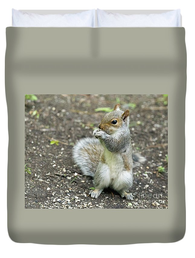 Baby Duvet Cover featuring the photograph Baby Squirrel by Laurie Pocher