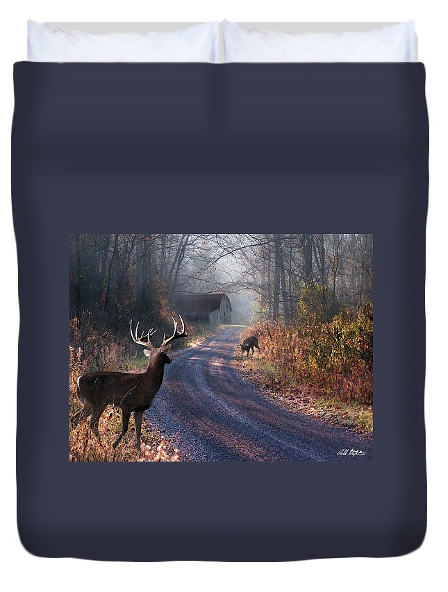 Deer Duvet Cover featuring the digital art Back Home by Bill Stephens
